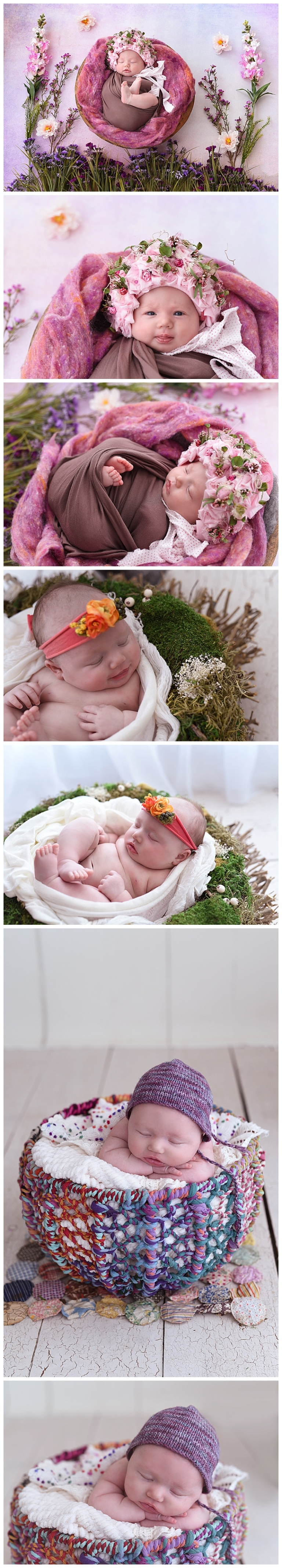 anchorage newborn photographer