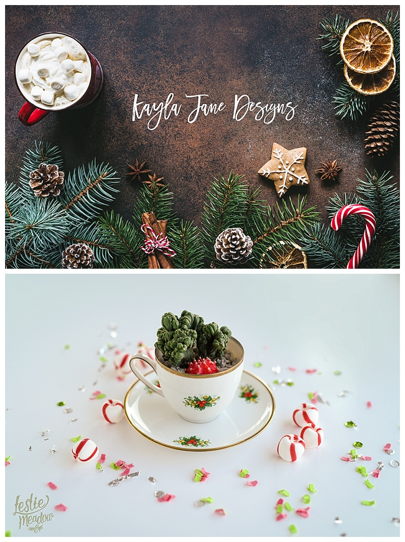 Christmas frame with hot chocolate, spices, candy cane, fir tree and gingerbread cookies. Copy space for text. Christmas wallpaper, card, background or design mock up